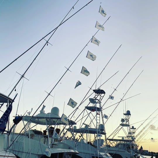 Wrapped Up led by Capt. Patrick Price of Jensen Beach and owned by Chris Lazarra of Palm Beach caught a fleet-high 10 sailfish Thursday to give the team 18 in two days of the Pelican Yacht Club Billfish Invitational in Fort Pierce.