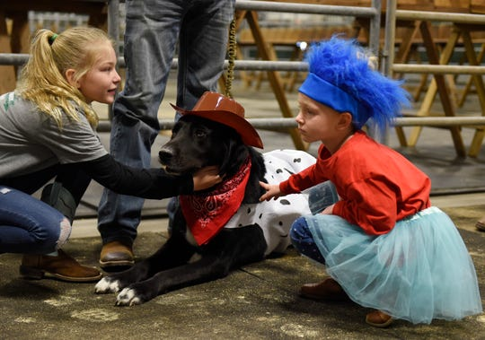 Delta, center, receives pets from contestants before the dog show, Saturday, Jan. 11, 2020, in Robstown. Delta entered the costume contest.