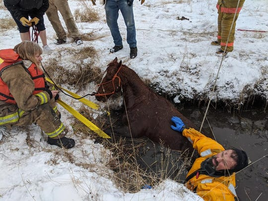 Marion volunteer firefighters and community members saved a 20-year-old quarter horse gelding, Henry, from freezing waters in northwestern Montana earlier this week.