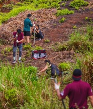 Students with the University of Guam's AmeriCorps Volunteer Center and other volunteers participate in a tree planting project in the Ugum watershed area of Malojloj in this Jan. 11 file photo.