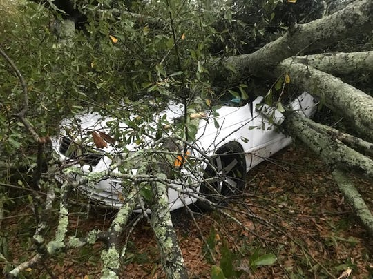 Heavy winds knocked a large tree over on a car on Ridge Road in Lafayette early Saturday. No injuries were reported.