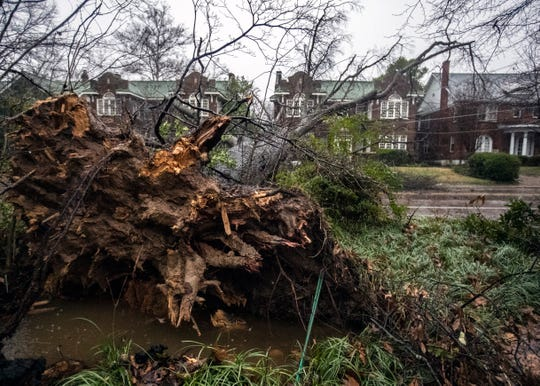 N. McLean Blvd  is blocked by an uprooted tree as a result of heavy rain and wind in the area on Saturday Jan. 11, 2020.