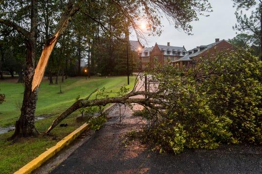 A tree branch blocks a road on Jim Wilson Loop at Huntingdon College in Montgomery, Ala., on Saturday, Jan. 11, 2020.