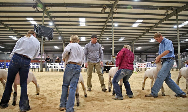 Bryan Maye, center,  judges part of the lamb show during the annual Tom Green County Jr. Livestock Show at the San Angelo Fairgrounds on Saturday, Jan. 11, 2020.