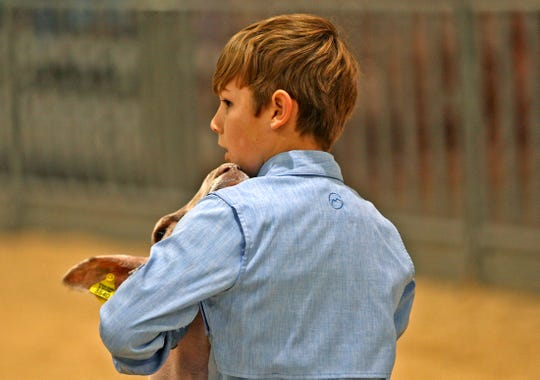 Carter Hohensee keeps an eye on the judge as he shows his lamb during the Tom Green County Jr. Livestock Show at the San Angelo Fairgrounds on Saturday, Jan. 11, 2020.