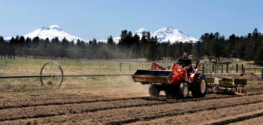 Trevor Eubanks, plant manager for Big Top Farms, readies a field for another hemp crop near Sisters, Oregon.