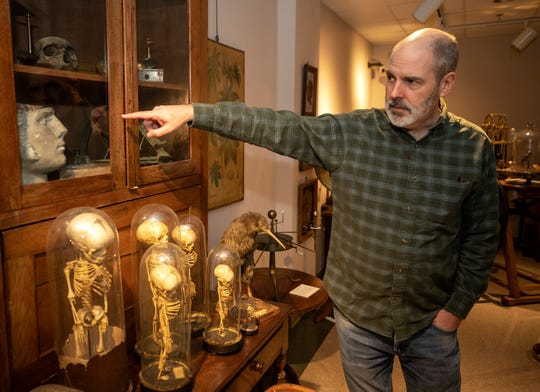 Jamie Day, a physics professor at Transylvania University, points to a phrenology skull in which is part of the Monroe Moosnick Medical and Science Museum at the school. Jan. 6, 2020.