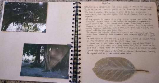 Jody Kuchar's personal travel journal.