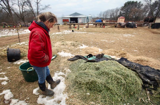 Cindy Kanarowski-Peterson stands next to a pile of alfalfa hay at Red Ridge Ranch on Jan. 9, 2020. She said she bought the hay from an online auction site and that it was infected with blister beetles, a toxic beetle that can be deadly to horses; 14 of her horses have died over the past four months.