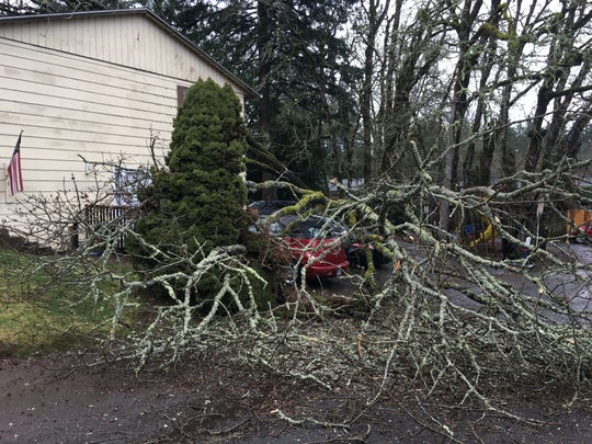 A giant oak toppled on the house and cars of South Salem residents Emma and Roger Pena during a rainstorm on Saturday, Jan 11, 2020. The fallen branches left damage to the roof of the house at 763 Wardell Lane S where the couple has lived for more than 40 years.