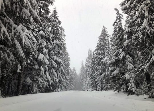 The view on Highway 58 just east of Willamette Pass at about noon Sunday, January 12.