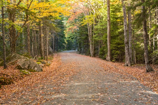 Cars are barred from driving on the 45 miles of carriage roads within Maine's Acadia National Park, making it safer for biking.