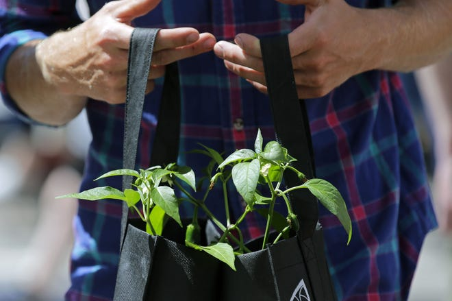 Appleton Downtown Inc. will try to bring a farm market-like environment to the Fox Cities Exhibition Center for three Saturdays in February, March and April.