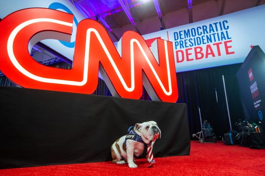 Drake University mascot Griff poses for photos before the CNN/Des Moines Register Democratic presidential debate Tuesday, Jan. 14, 2020.