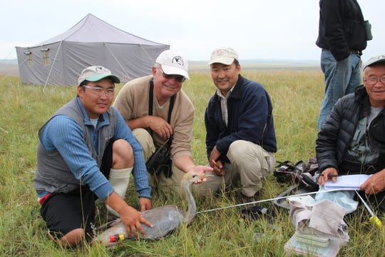George Archibald, second from left, has traveled the world to study and protect cranes.