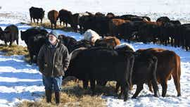 Clearwater farmer raises beef to help the planet