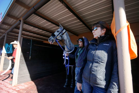 Horse trainer Nancy Summers gets horse, I'm a Dancin Who, ready for its upcoming race Saturday, Jan. 11, at Sunland Park Racetrack and Casino in Sunland Park, N.M.