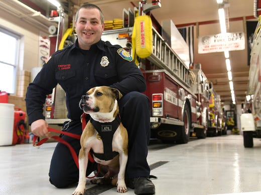 Tyler Van Leer of the Millville Fire Department and Hansel pose for a photo on Tuesday. Hansel will be the first pit bull in the United States certified in arson detection, according to Throw Away Dogs Project.