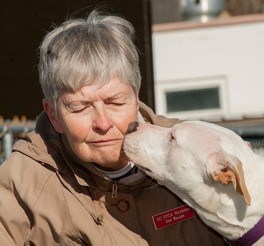 Gretchen Carpenter with Jenna, one of the dogs up for adoption at the Dutchess County SPCA. Carpenter is a volunteer.
