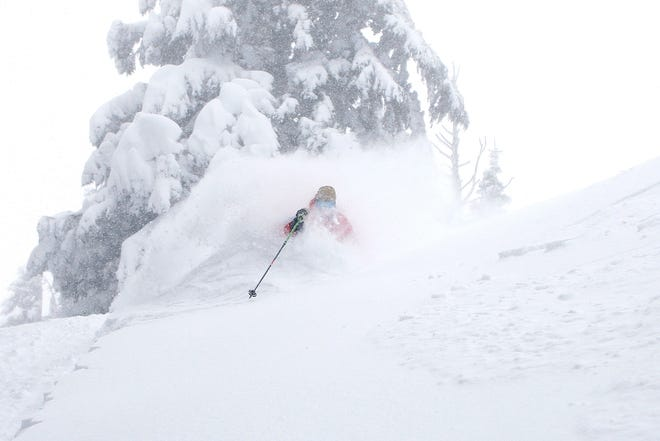 Asit Rathod skis the deep powder in the trees at Mount Hood Meadows Ski Area.