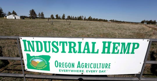 In this April 23, 2018, file photo, a sign designates the type of crop grown in a field as it stands ready to have another hemp crop planted for Big Top Farms near Sisters, Ore.