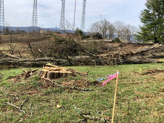 Lot clearing has begun on property along Airport Road at Loop Road. Ingles Markets has a permit to build a grocery store there.