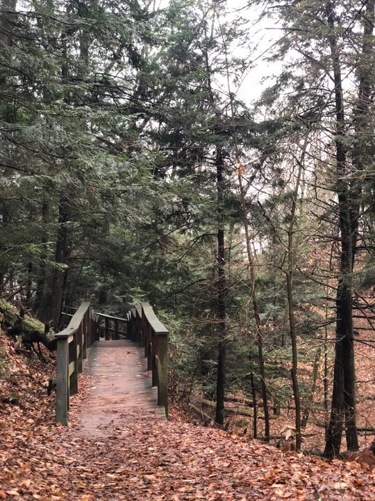 The governor's order recognizes the importance of park and recreation areas to provide Michigan residentsaccess to local opportunities to get outdoors to enjoy nature and exercise, the park managers write.