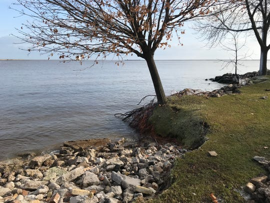 Erosion has left this tree's roots exposed on the Lake Michigan shore near the YMCA in Manitowoc, Dec. 3, 2019.