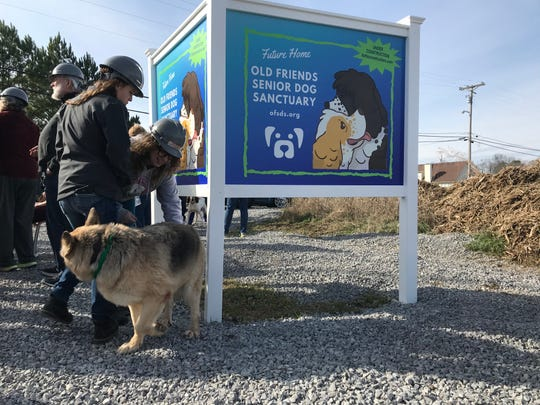 Work on a new facility for Old Friends Senior Dog Sanctuary on Nonaville Road in Mt. Juliet is underway.