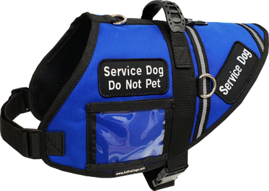 Example of a service dog vest