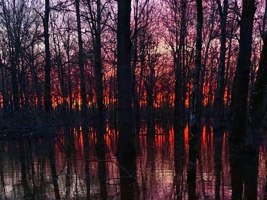 Dawn on a morning duck hunt in Arkansas.