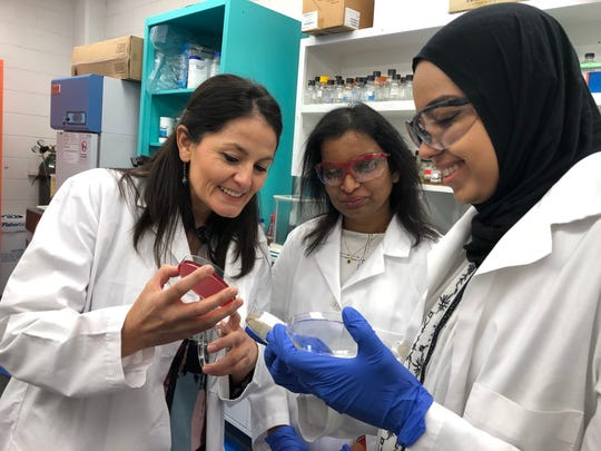 Paola Mera, assistant professor of chemistry and biochemistry, discusses bacteria research with lab manager and research scientist Inoka Meikpurage and NMSU senior and genetics major Rawan Elaksher.