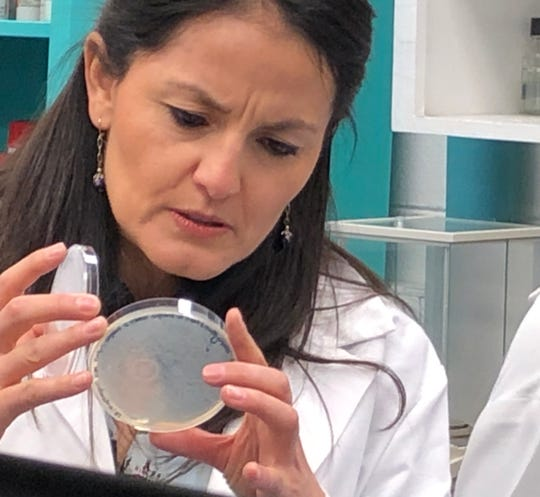Paola Mera, NMSU assistant professor of chemistry and biochemistry, received a $1.5 million grant from the National Institutes of Health to research antibiotic resistance. (NMSU photo by Minerva Baumann)