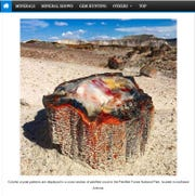 This photo of a piece of petrified wood in Arizona appeared in an online geology newsletter in late 2019.