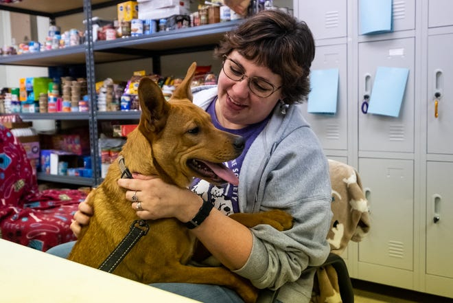 Logan sits with Blue Water Area Humane Society Director Katie Phelan Friday, Jan. 17, 2020, at Blue Water Area Humane Society. Logan, who was rescued with his brothers from a puppy mill situation last Spring, was chosen to compete in this year's Puppy Bowl.