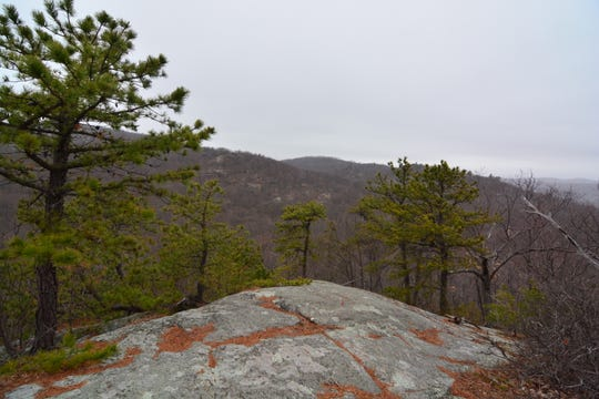 This is the first in a collection of views along the Wyanokie High Point Loop.