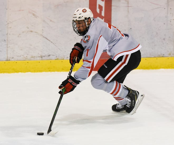 St. Cloud State senior Nick Poehling skates with the puck Saturday, Jan. 18, 2020, at Herb Brooks National Hockey Center.