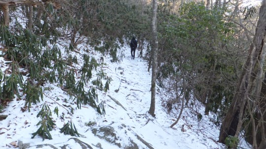 Snow covers the trail at Upper Creek Falls in Pisgah National Forest in Burke County.