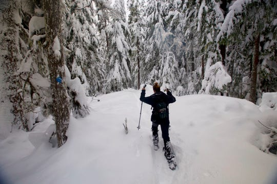 Alisha Dodds snowshoes through the forest on the Diamond Falls Loop near Willamette Pass.