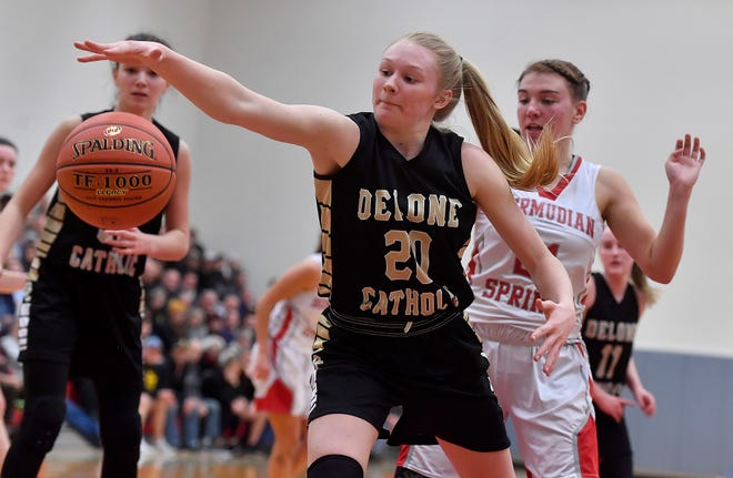 Delone Catholic's Brooke Lawyer was named a Class 3-A all-state first-team girls' basketball performer by Pennsylvania's sports writers.