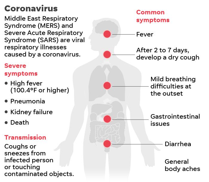 https://www.gannett-cdn.com/presto/2020/01/21/USAT/4e147c2b-df33-4d85-a922-5602cbcdffdf-012120-Coronavirus-SARS-MERS_Online.png