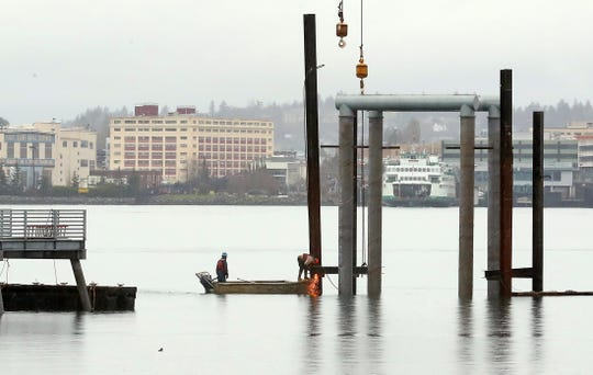Construction crew members work among the new pilings of the Annapolis Ferry Dock expansion in Port Orchard on Wednesday, Jan. 22, 2020.