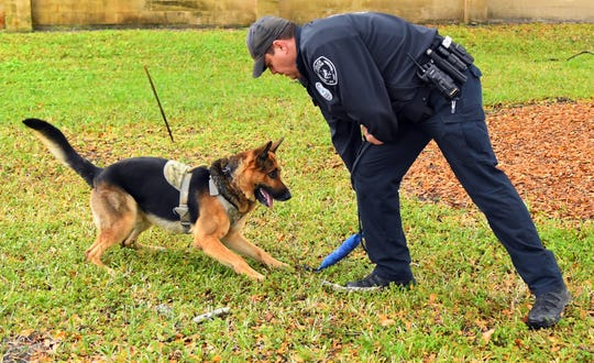 Cocoa Police K-9 Officer Dan Rhoades and K-9 Bear are competing in the A&E television show America's Top Dog, and took first place in episode 2.