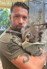 Todd Veeck with a rescued koala.