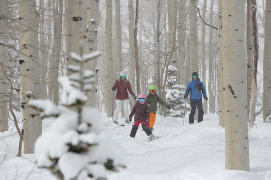 Park City Resort offers open gladed skiing on gentle terrain for family fun.
