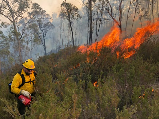 American wildland firefighters work on the Tambo Complex in Australia.