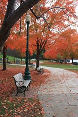Judy Winter captures a peaceful scene at Waryas Park in Poughkeepsie.