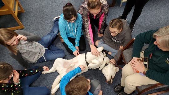 Oconto Middle School students rub the belly of Charlie, a Labrador, after being notified Tuesday, Jan. 21 that three childen — two from the middle school and one from the high school — died in a fire Jan. 17. Four dogs were brought by HOPE crisis response volunteers.