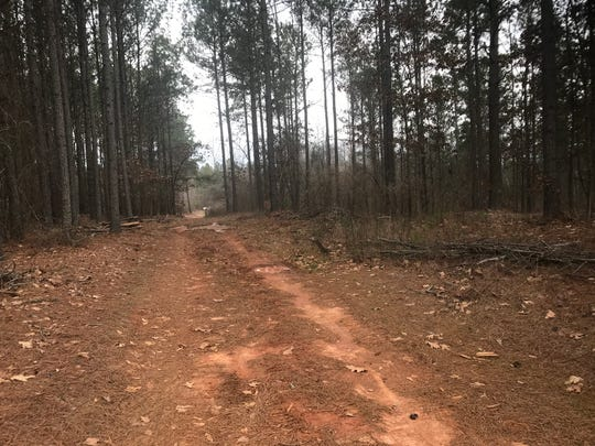The Central and Southern Wesleyan biking and hiking trails are 6-plus miles of trail in the woods next to SWU's campus. The trail system is set to open sometime in late spring, according to city official and project manager Curt Kurz-Edsall.