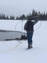 Billy Cyr prepares to rope a moose that fell through the ice at small lake on private land east of Lincoln.